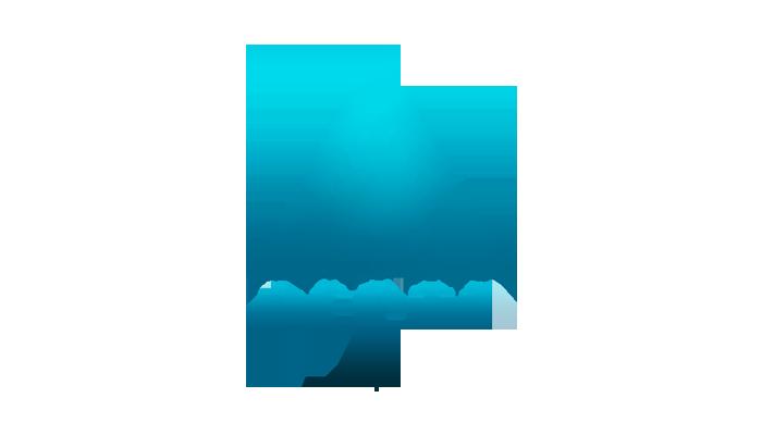 Transcription For Depthpr