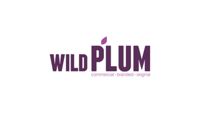 Business Transcription service for Wildplum
